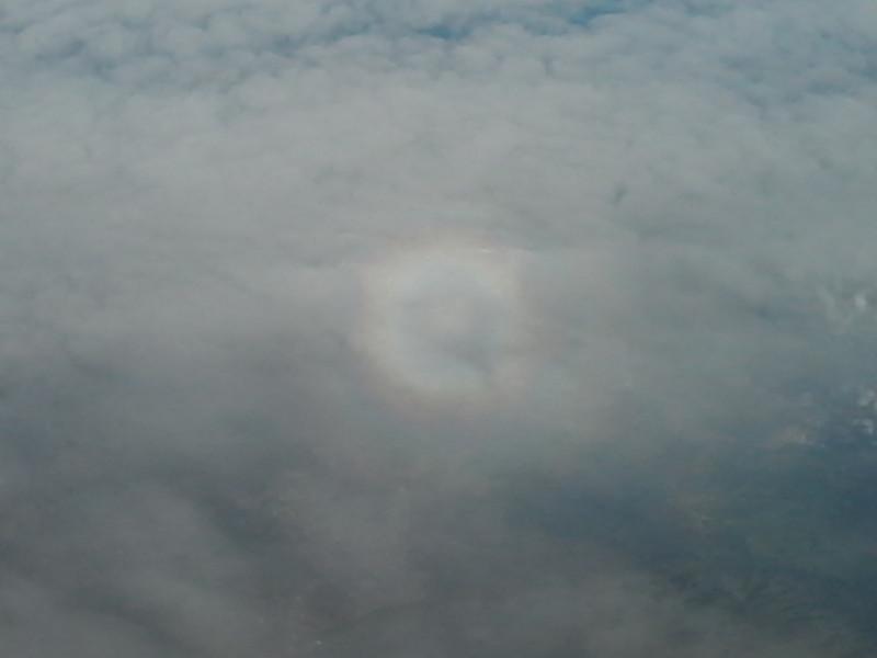 Glória ao redor da sombra de um avião projetada na nuvem (foto: ViniRoger, sobrevoando Brasília).