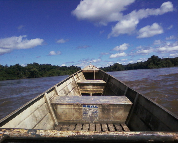 Voadeira subindo o rio Machado.