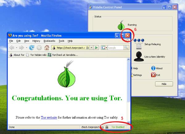 Tela de certificação que você está usando o Tor com o Firefox no Windows.