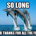 dolphin mysql hitchhiker