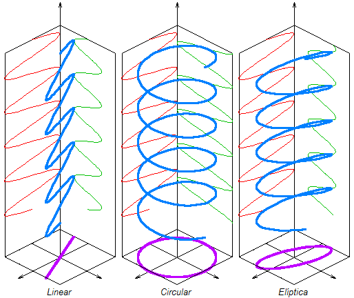 Esquema ilustrativo dos diferentes tipos de polarização (http://en.wikipedia.org/wiki/Polarization)