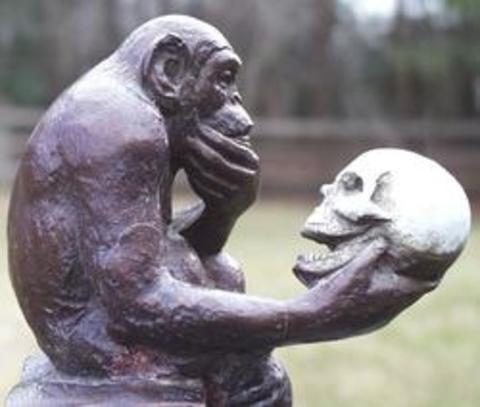 El mono pensador