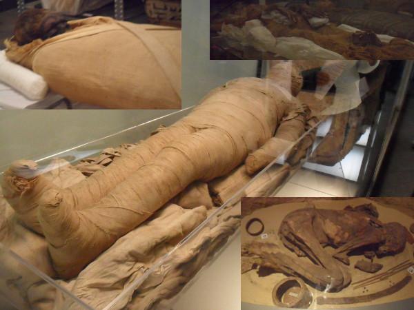 Múmias. Fotos: ViniRoger