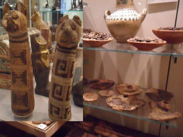 Múmias de gatos e comida desidratada (pães, gordura, frutas). Fotos: ViniRoger.
