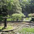 Jardim Botânico: espelho d'água e antigo portão. Foto: ViniRoger.
