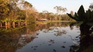 PqBurleMarx lago