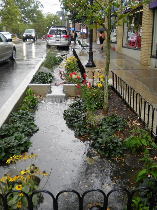 Jardim de chuva (rain garden). Fonte: State College Pennsylvania