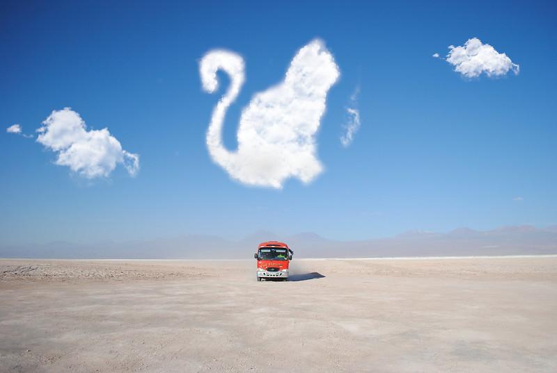 Nuvem em formato de gato criada no editor de imagens