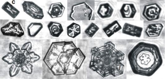 Fotos de cristais de gelo em forma de placas e colunas observados em nuvens - formatos irregulares são regra. Fonte: Bailey & Hallet (2021)