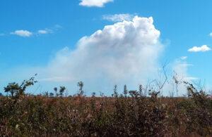 Nuvem formada diretamente acima da fumaça gerada por queimada no Tocantins (junho de 2019). Foto: ViniRoger